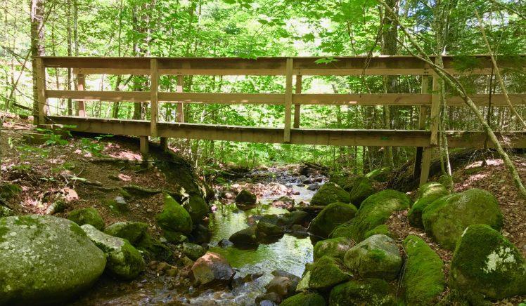 cropped-bridge-2.jpg